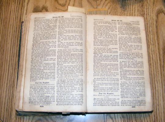 German Bible Image #1