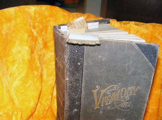 Vitalogy Front Cover